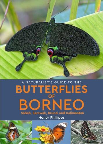 A Naturalist's Guide to the Butterflies of Borneo - Naturalist's Guides (Paperback)