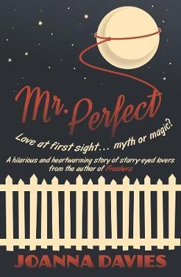 Mr Perfect (Paperback)