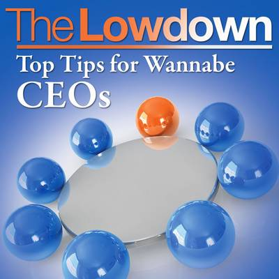 Top Tips for Wannabe CEOs - The Lowdown (CD-Audio)