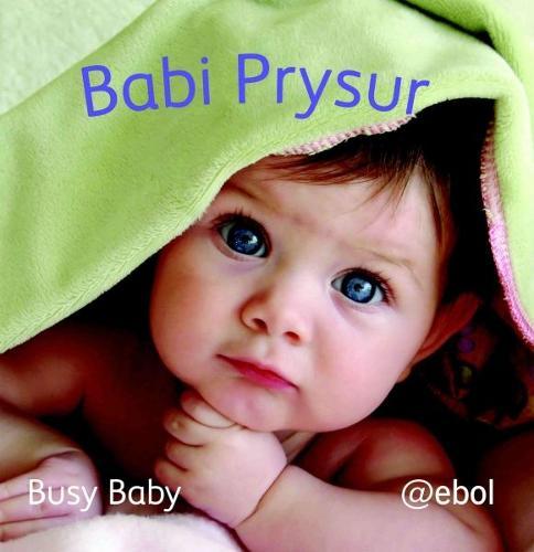 Fy Llyfr Lluniau Defnydd Meddal/My Photo Soft Cloth Book: 2. Babi Prysur/Busy Baby (Rag book)
