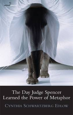 The Day Judge Spencer Learned the Power of Metaphor (Paperback)