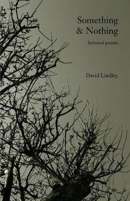 Something & Nothing: Selected Poems (Paperback)