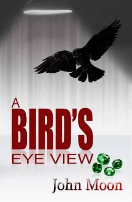 A Bird's Eye View (Paperback)