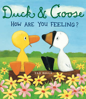 Duck and Goose: How are You Feeling? (Paperback)