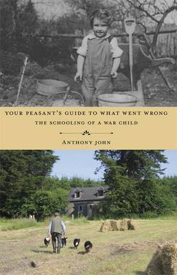 Your Peasant's Guide to What Went Wrong: The Schooling of a War Child (Paperback)