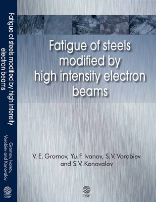 Fatigue of Steels Modified by High Intensity Electron Beams (Hardback)