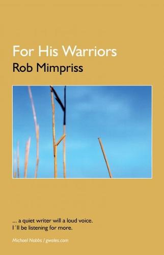For his Warriors - Thirty Stories (Paperback)