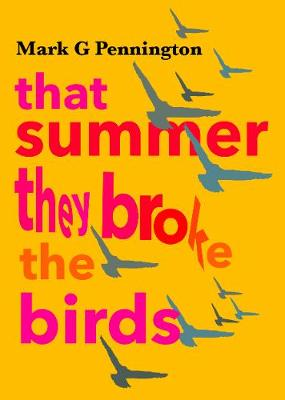 That summer they broke the birds (Paperback)
