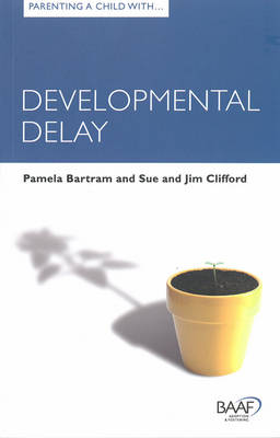 Parenting a Child with Developmental Delay (Paperback)