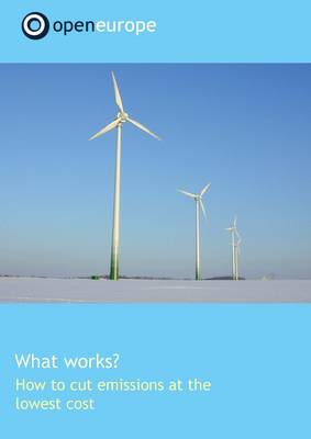 What Works? How to Cut Emissions at the Lowest Cost (Paperback)