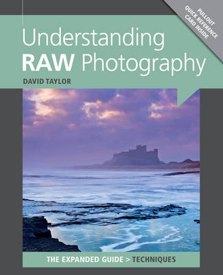 Understanding RAW Photography (Paperback)