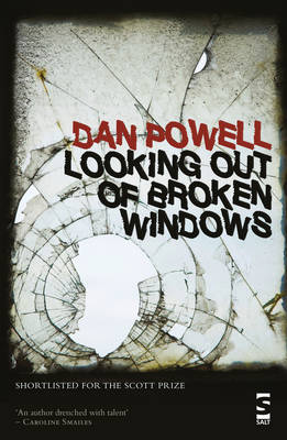 Looking Out Of Broken Windows (Paperback)