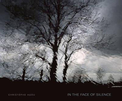 In the Face of Silence (Hardback)