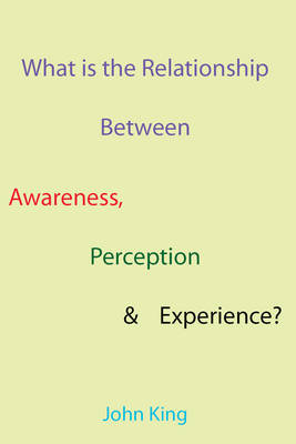 What is the Relationship Between Awareness, Perception & Experience? (Paperback)