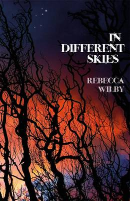 In Different Skies (Paperback)