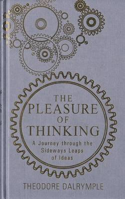 Pleasure of Thinking: A Journey Through the Sideways Leaps of Ideas (Hardback)