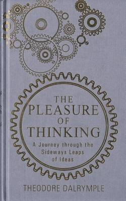 Pleasure of Thinking: A Journey Through the Sideways Leaps of Ideas (Paperback)