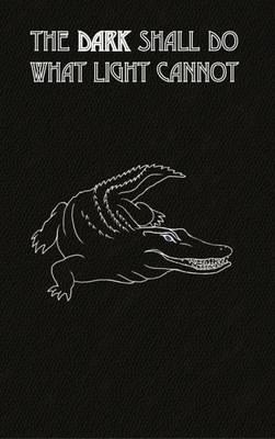 The Dark Shall Do What Light Cannot - LiGa 2 (Paperback)