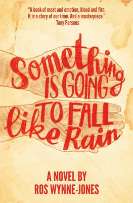 Something is Going to Fall Like Rain (Paperback)