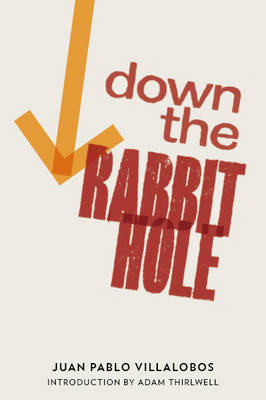 Down the Rabbit Hole (Paperback)