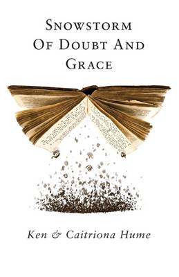 Snowstorm Of Doubt And Grace (Paperback)