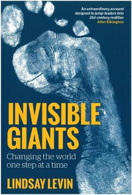 Invisible Giants: Changing the World One Step at a Time (Paperback)