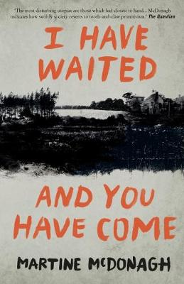 I Have Waited, and You Have Come (Paperback)
