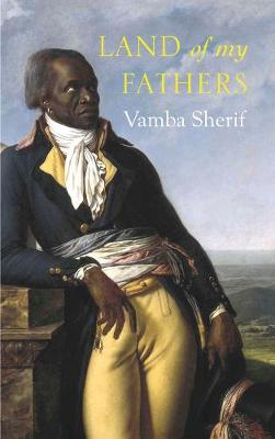 Land of My Fathers (Paperback)