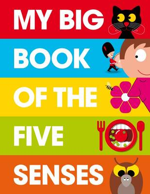 My Big Book of the Five Senses (Hardback)