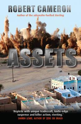 Assets (Paperback)