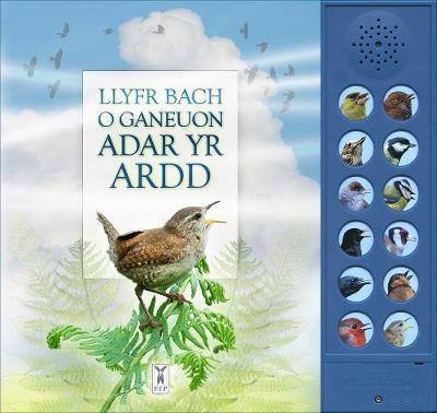 LLYFR BACH O GANEUON ADAR YR ARDD: The Little Book of Garden Bird Songs (Welsh edition) (Board book)