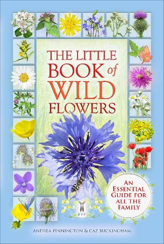 The Little Book of Wild Flowers (Paperback)