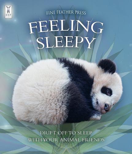 Feeling Sleepy (Board book)