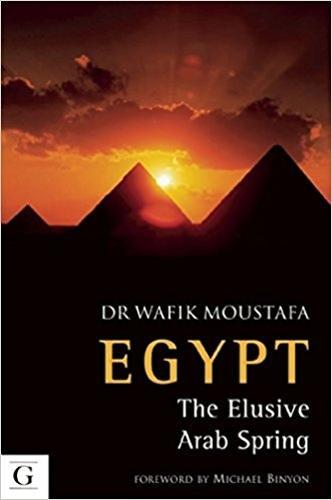 Egypt: The Elusive Arab Spring (Paperback)