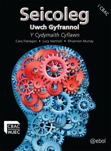 Seicoleg Uwch Gyfrannol - Y Cydymaith Cyflawn (Paperback)