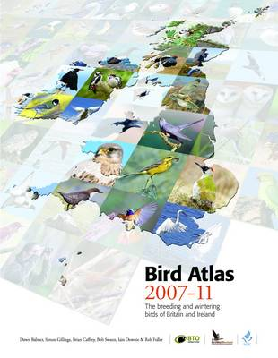 Bird Atlas 2007-11: The Breeding and Wintering Birds of Britain and Ireland (Hardback)