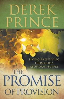 The Promise of Provision (Paperback)