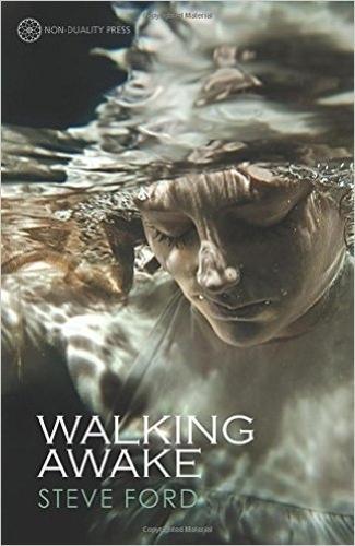 Walking Awake (Paperback)
