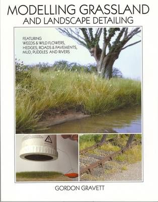 Modelling Grassland, and Landscape Detailing: Featuring Weeds, Wildflowers, Hedges, Roads & Pavements, Mud, Puddles and Rivers (Paperback)