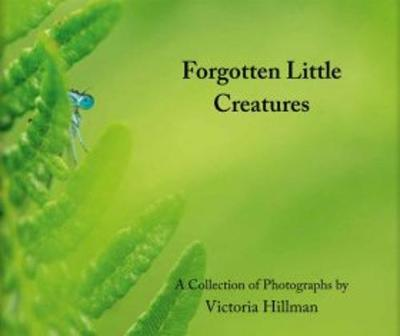 Forgotten Little Creatures: A Collection of Photographs by Victoria Hillman (Hardback)