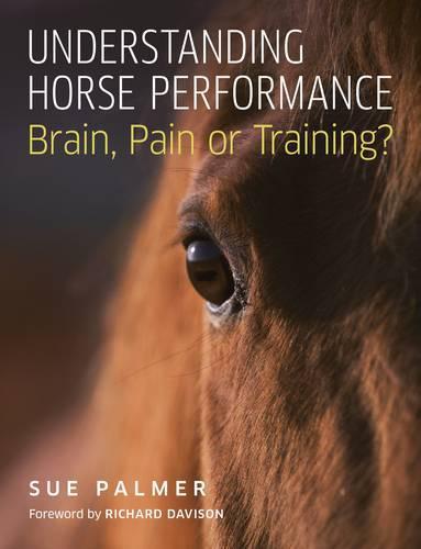 Understanding Horse Performance: Brain, Pain or Training? (Paperback)