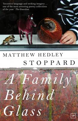 A Family Behind Glass (Paperback)
