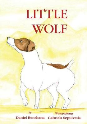Little Wolf (Paperback)