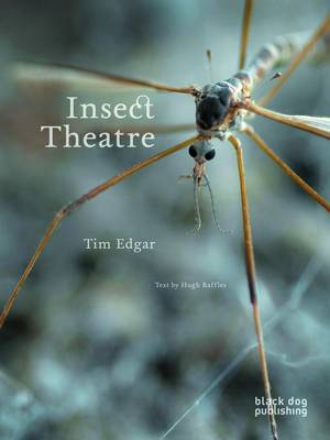 Insect Theatre (Paperback)