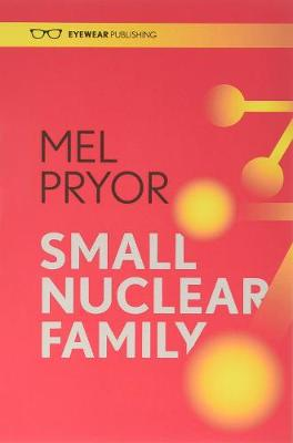 Small Nuclear Family (Paperback)