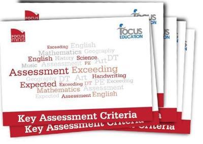 Focus Mini: Key Assessment Criteria (Paperback)
