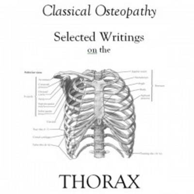 Selected Writings on the Thorax (Hardback)