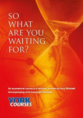 So what are you waiting for? Transcript (Paperback)
