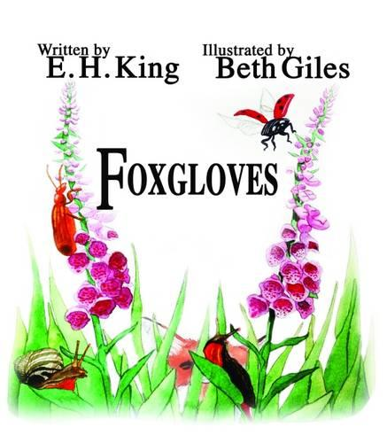 Foxgloves - The Meadow Flower Series 1 (Paperback)