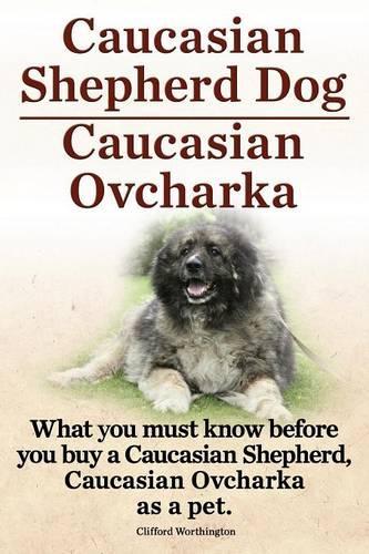 Caucasian Shepherd Dog. Caucasian Ovcharka. What You Must Know Before You Buy a Caucasian Shepherd Dog, Caucasian Ovcharka as a Pet. (Paperback)